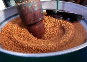 prensado-en-frio-de-las-semillas-de-albaricoque