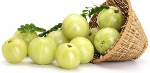 fruto del amla