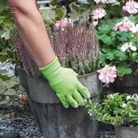 Jardinería Bio